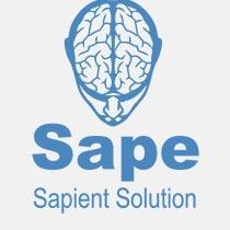 Вебмастер sape - плагин вебмастер sape