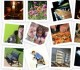 Бесплатные фотостоки и фотобанки